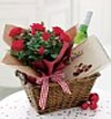 Marks and Spencer Flowers Christmas roses and wine