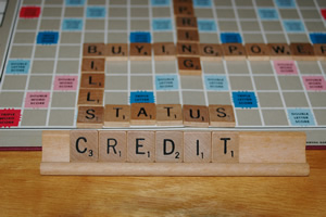 Check Your Credit Rating